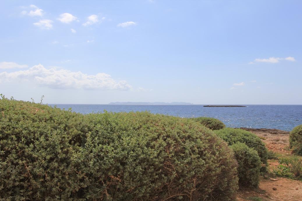 Cap de Ses Sallines