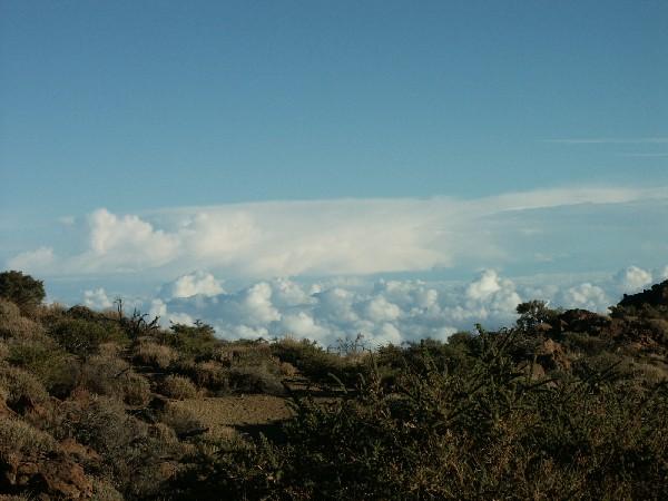Ausflug zum Teide