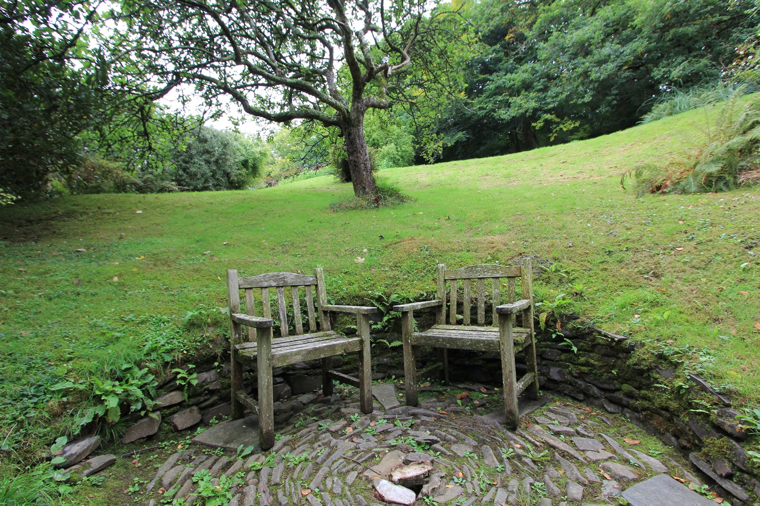 Docton Mill Gardens & Tea Rooms, Hartland