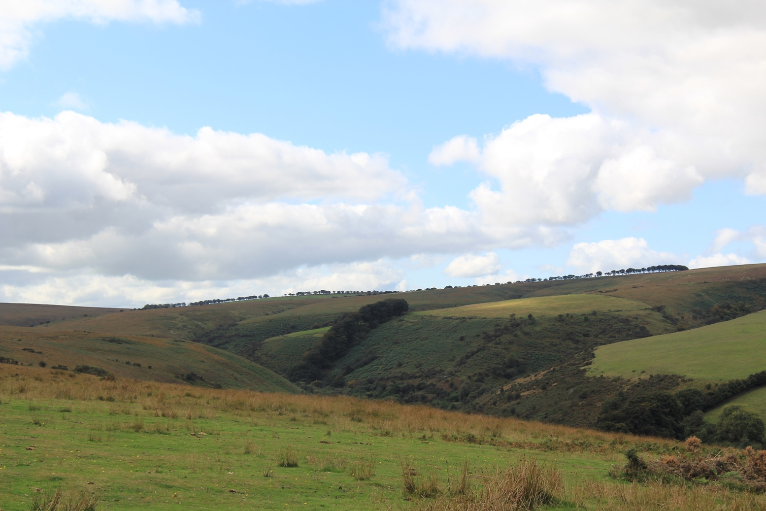 Exmoor Nationalpark, Luccombe